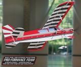 Citabria Wild high-wing heroics 3 D #GPMA1127