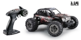 1:16 Green Power Elektro Modellauto High Speed Sand Buggy X TRUCK schwarz/rot 4WD RTR 16005