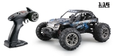 1:16 Green Power Elektro Modellauto High Speed Sand Buggy X TRUCK schwarz/blau 4WD RTR 16006